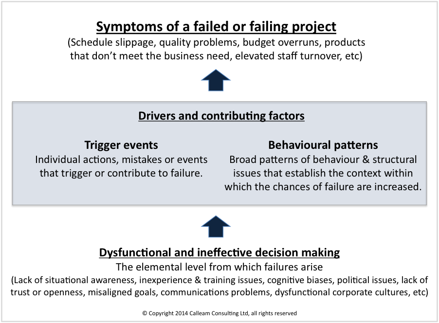 Figure 1 - Elements in project failure (click to enlarge)